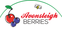 Avonsleigh Berries | Blueberries & Sour Cherries